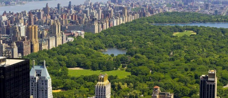 Aerial view of New York City Central Park