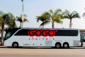 a GOGO Charters branded bus parked on a street lined with palm trees