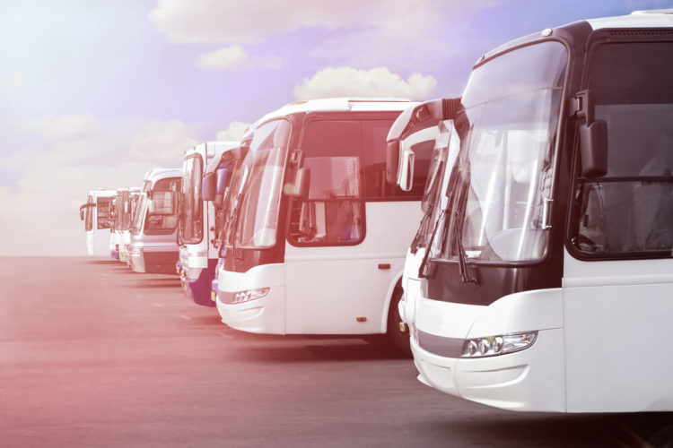 White charter buses parked in a row