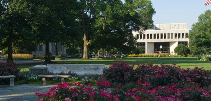 The American University campus