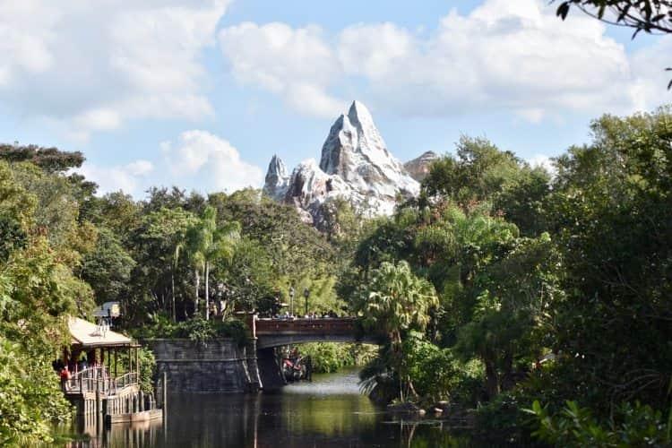 Inside of Animal Kingdom in Disney World Orlando