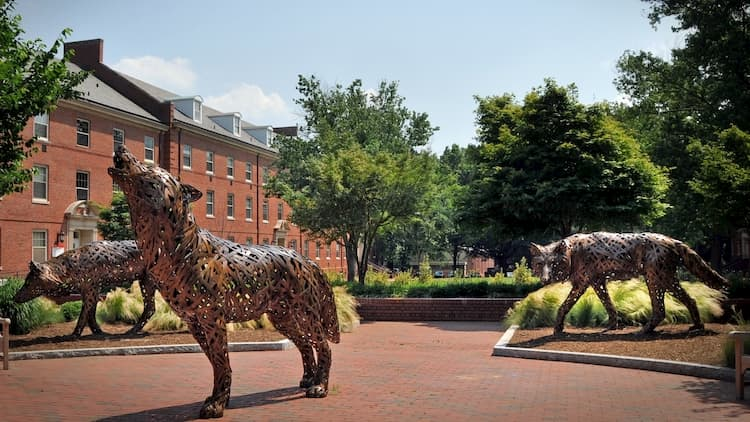 Wolf sculptures at NC State