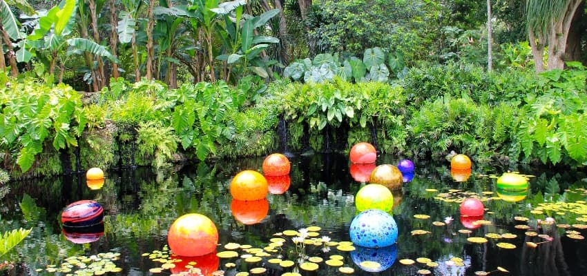 dale chihuly sculptures at Fairchild tropical gardens in miami florida