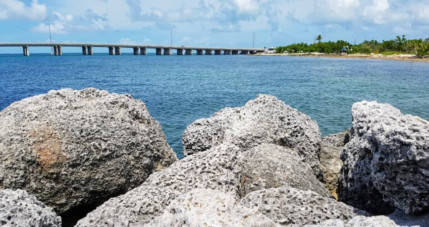 Rocks along the shore in Islamorada
