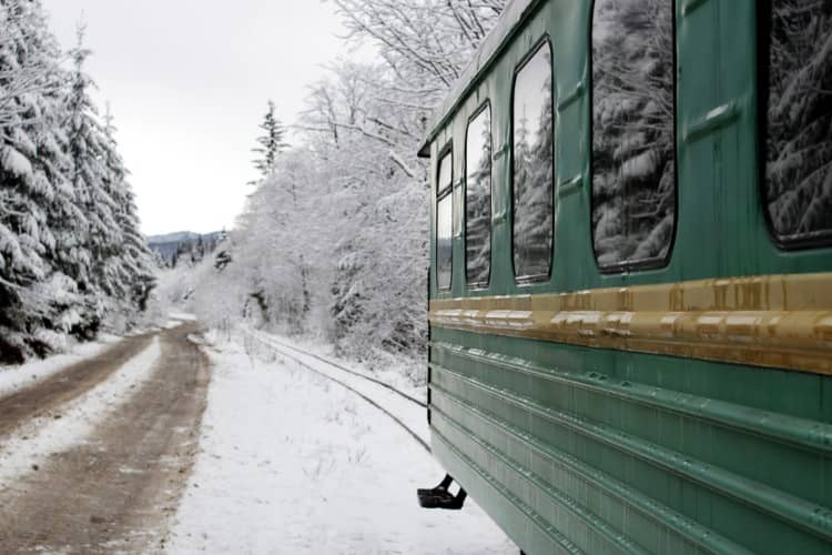 a polar express train rides through a snow-covered forest