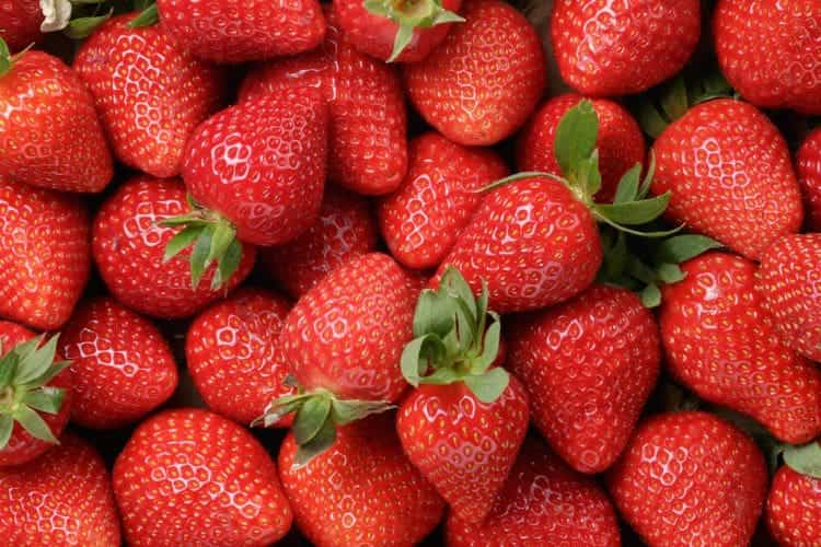 bunch of ripe bright red strawberries