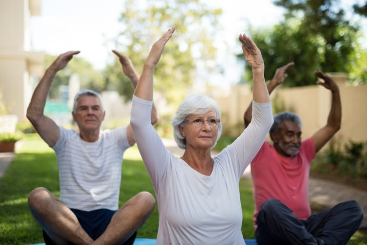 a small group of seniors does yoga in a park