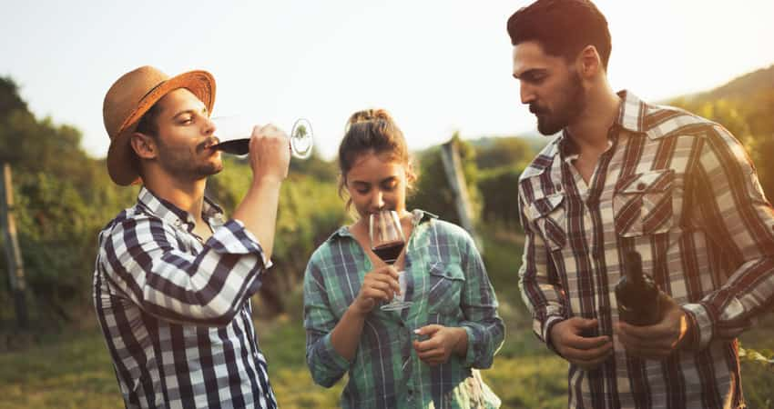 A group of friends having red wine in a vineyard