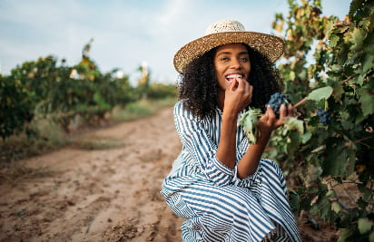 A woman in a broad sunhat eats grapes from the vine at a vineyard