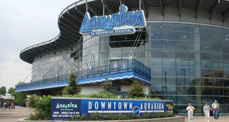 downtown aquarium in denver