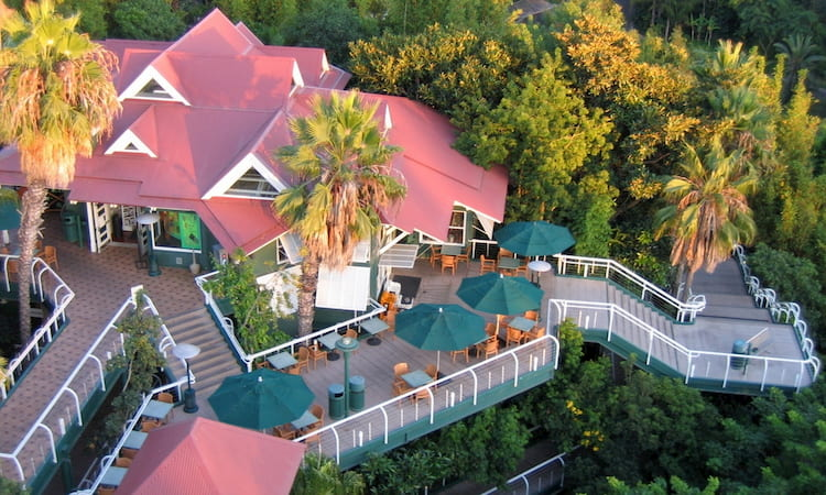aerial view of the San Diego Zoo's Treetop Deck venue