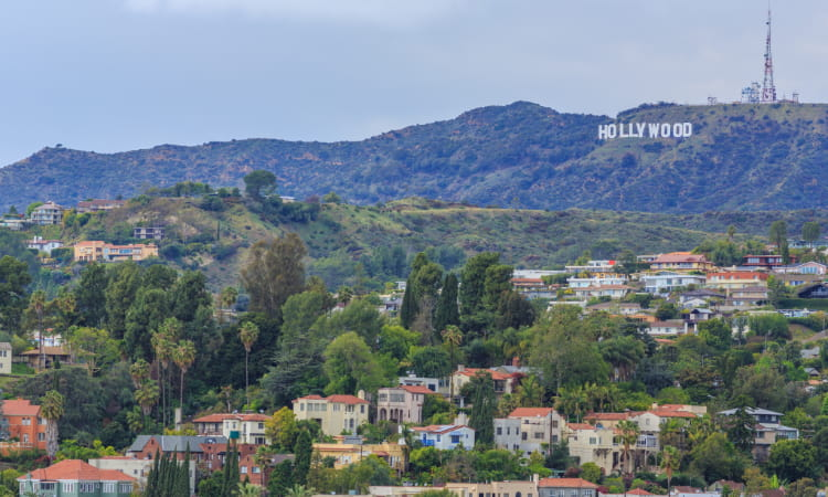 the Hollywood sign and the houses in the valley below
