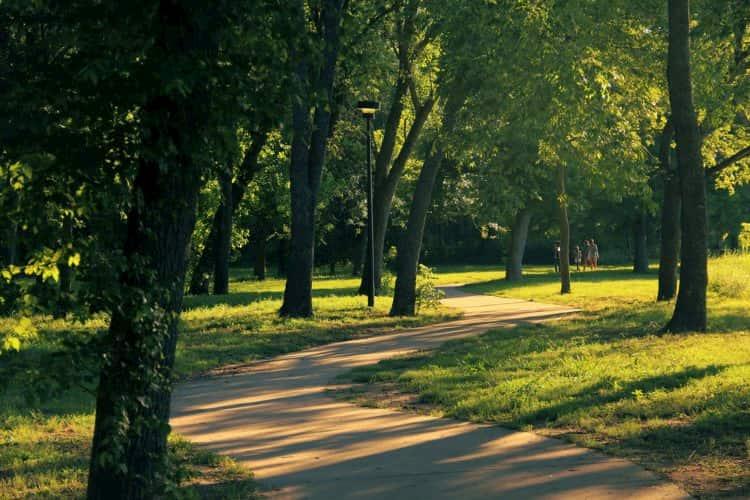 a beautiful green walking trail in mckinney falls state park