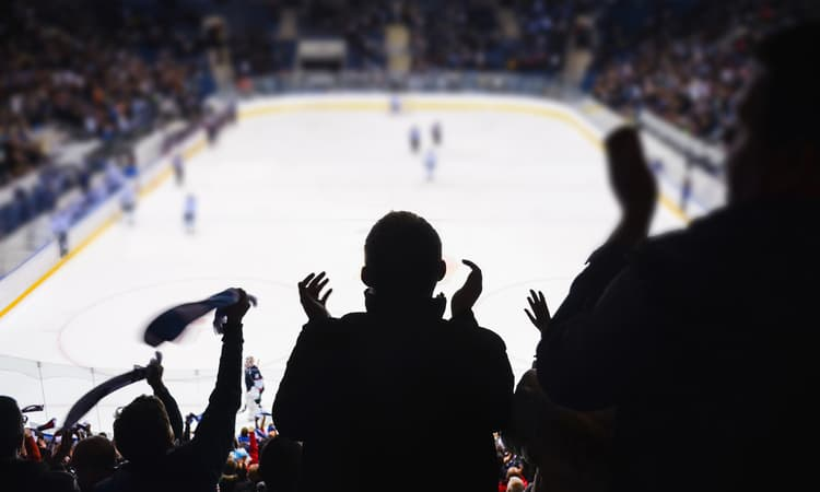 A crowd cheering in the stands at a hockey game