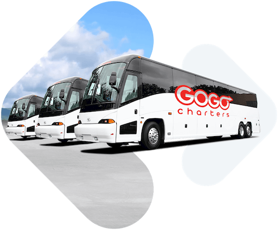 Charter Bus, Minibus & Motorcoach Rentals | GOGO Charters